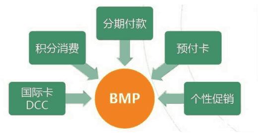 BMP的功能